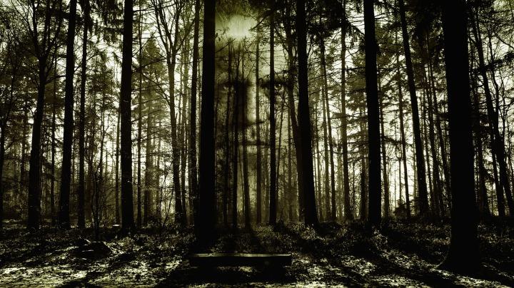 horror-2156302_1280